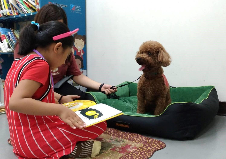 為了唸故事給狗狗聽,學童能提升專注力及口語表達能力