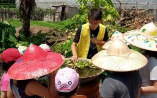 暑期社區職場體驗 大專青年助在地推