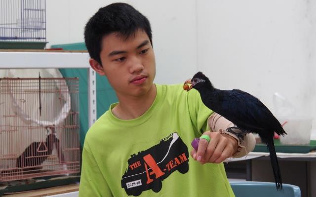 鳥禽訓練及動物照護見習體驗─國立自